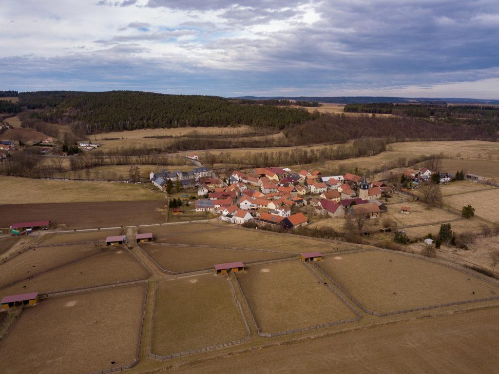 Kleinhettstedt Luftbild Straußenfarm