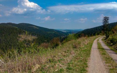 Verbote für Mountainbiker bei Ilmenau