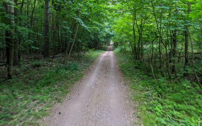 MTB – Müritz Nationalpark